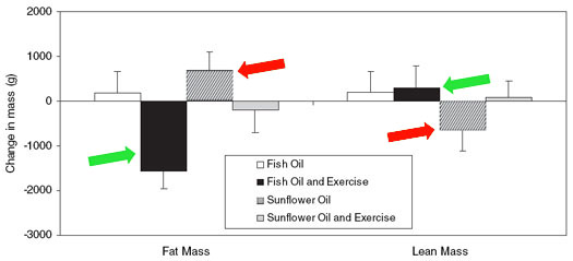 Fish Oil Weight Loss Graph